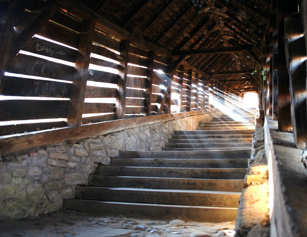 Scara Scolarilor din Timisoara