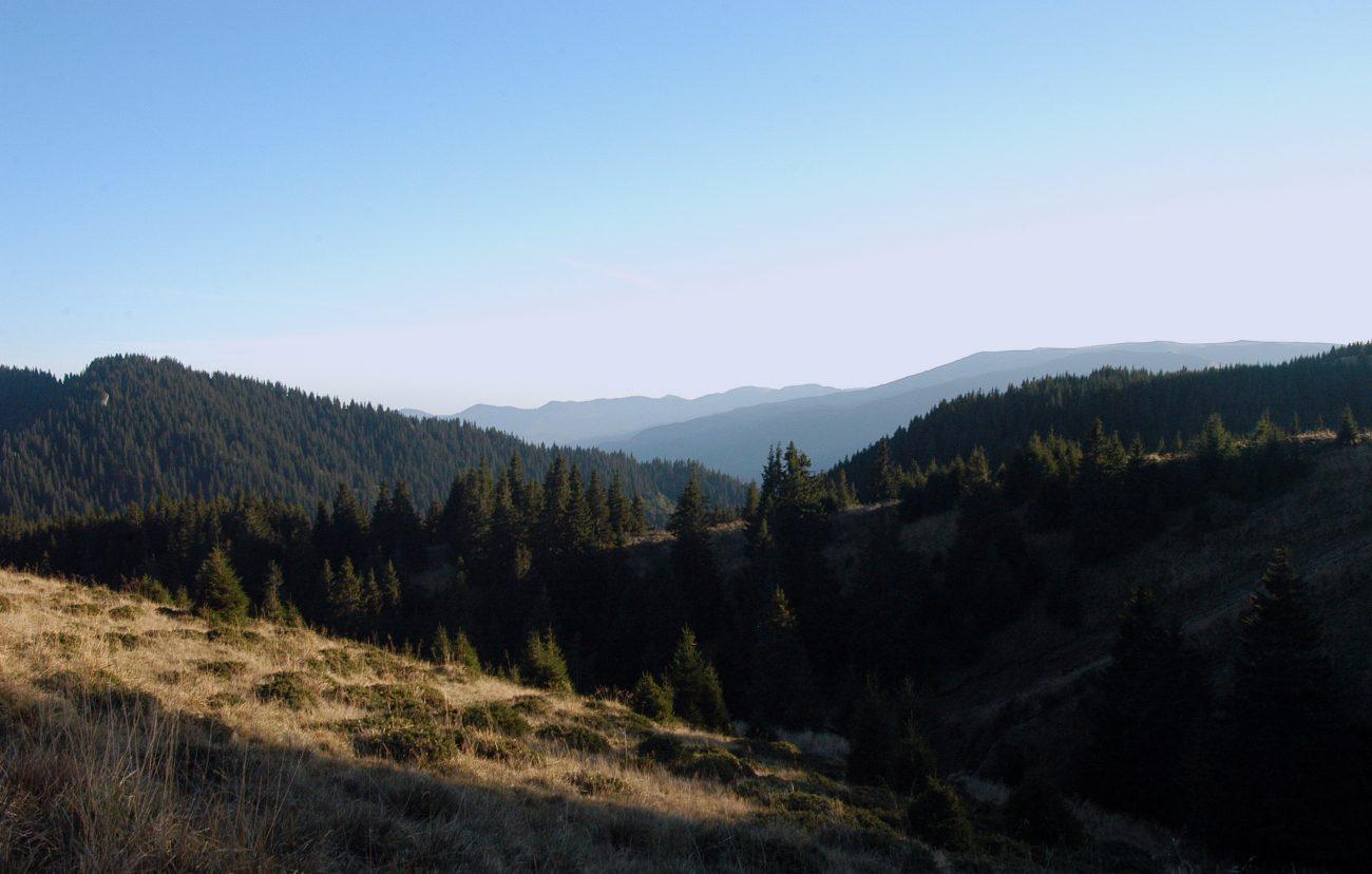 Imagini din Vf. Ciucas