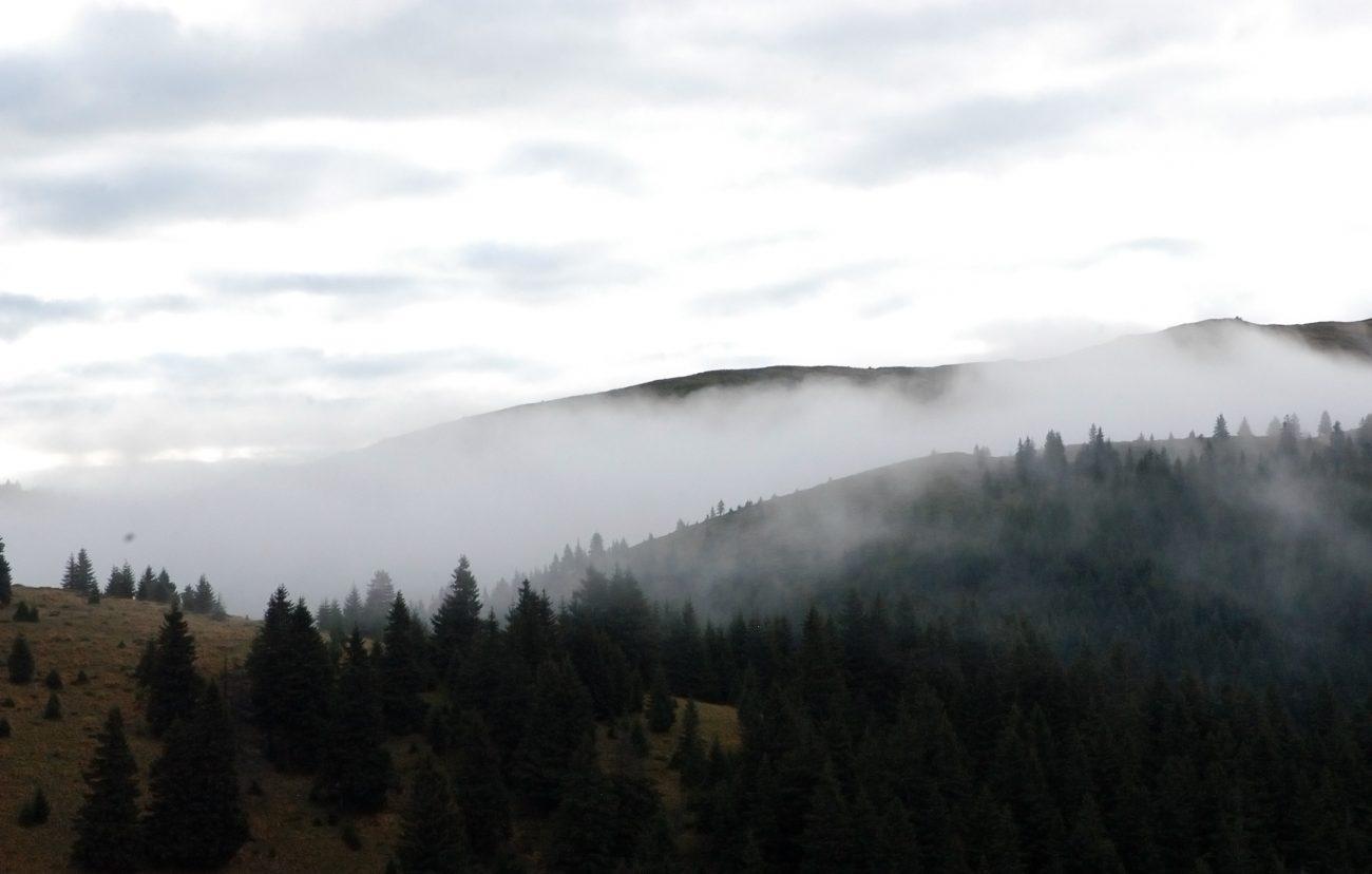 Ceata asupra muntilor Ciucas