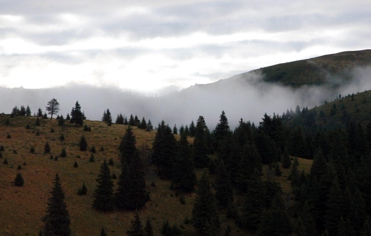 Peisaj mirific Muntii Ciucas
