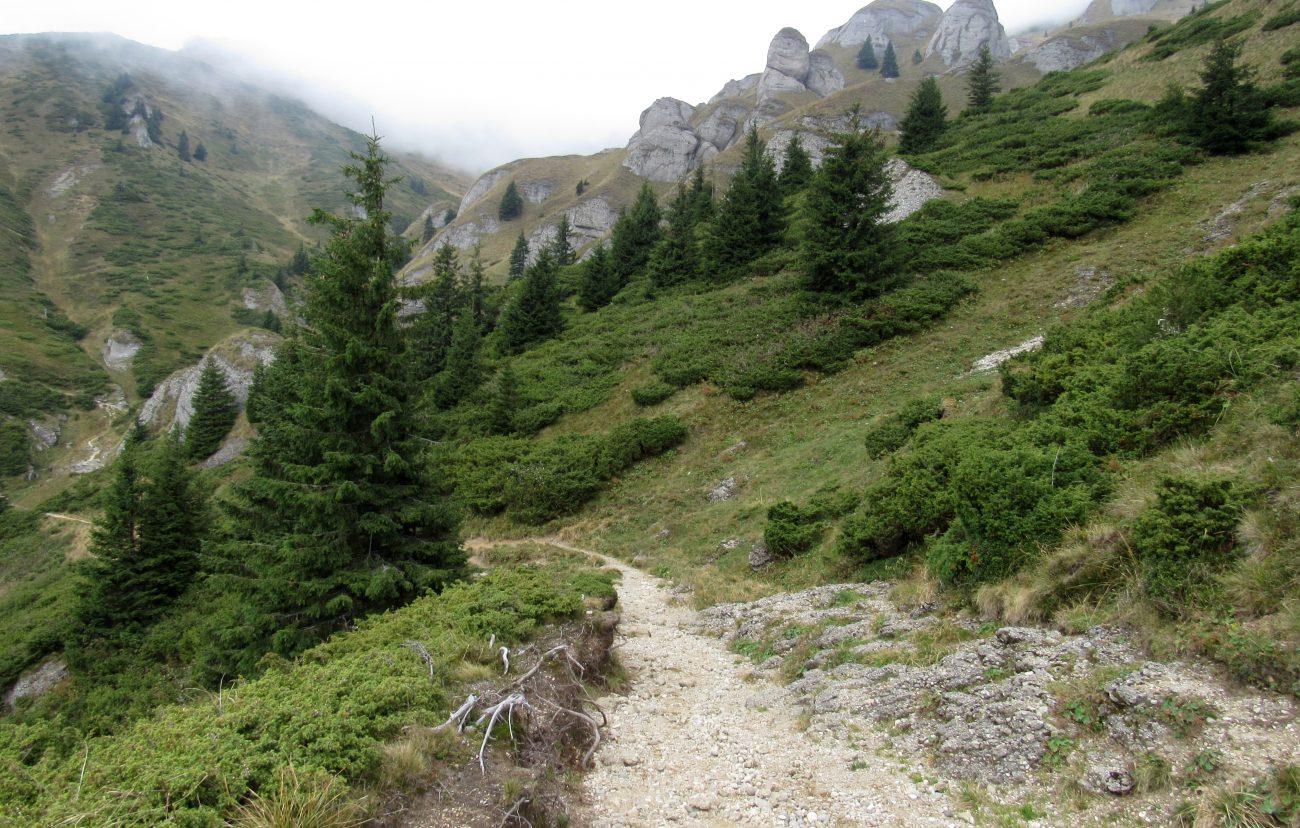 Traseul cabana Ciucas - Muntii Ciucas