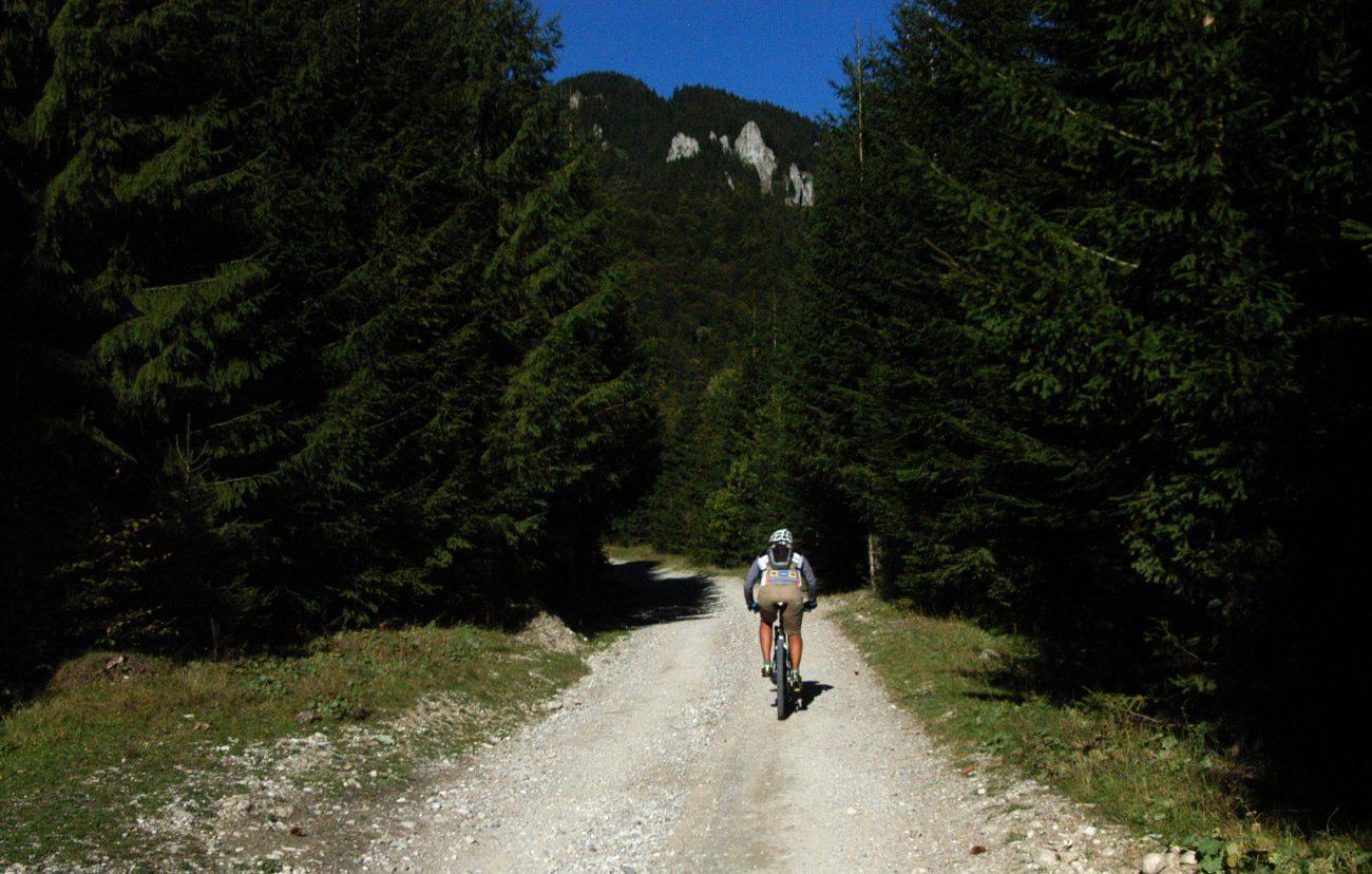 Biciclist urcand inspre Vf. Ciucas