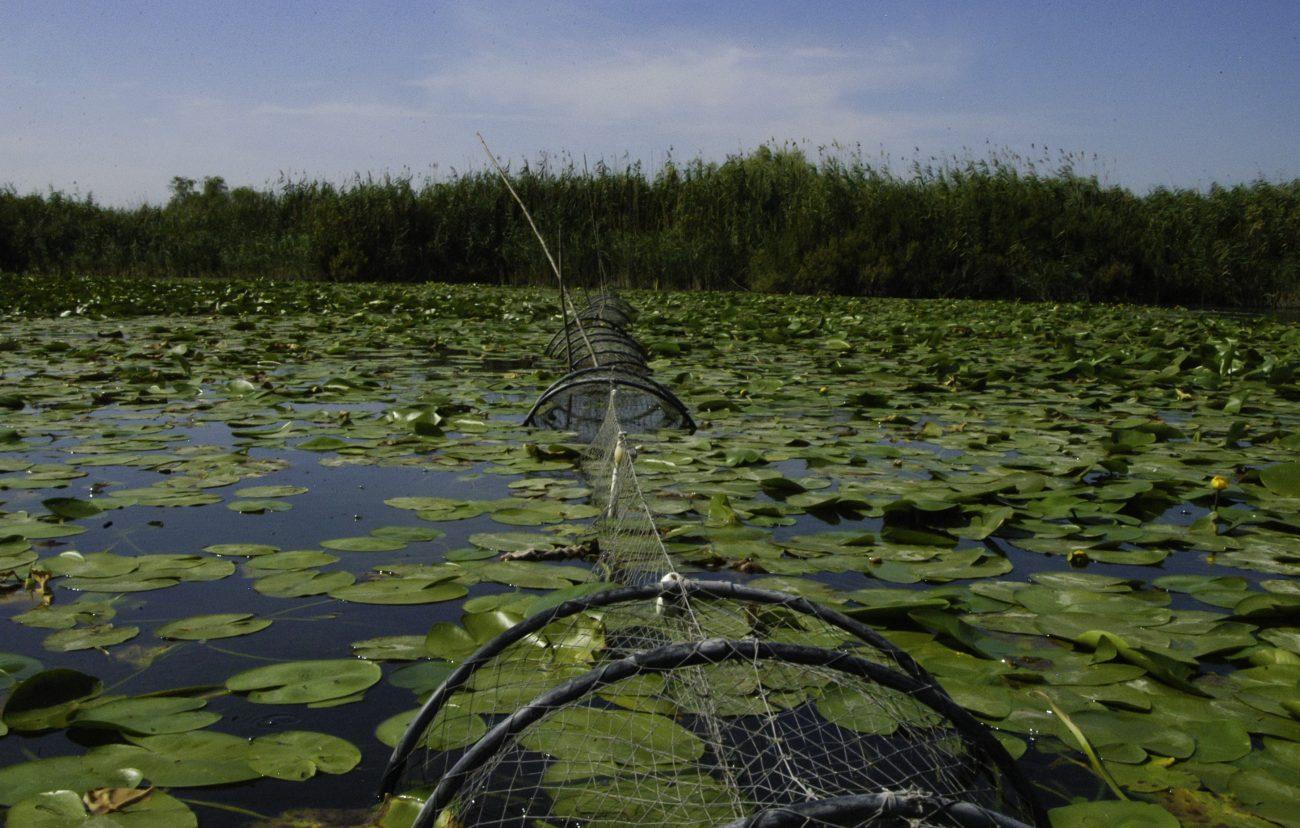 Navod de pescuit din Delta Dunarii