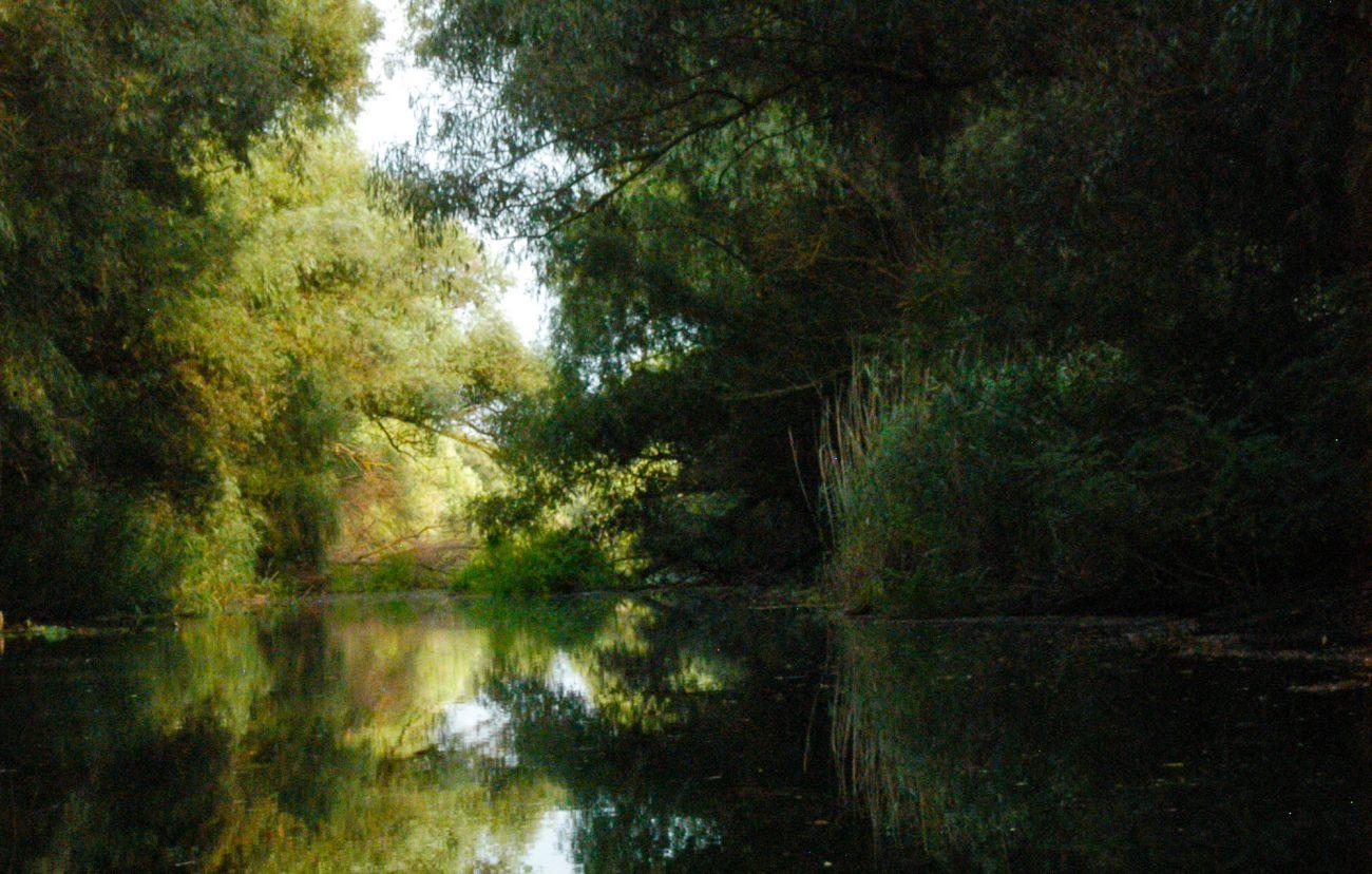 Pe canalele Deltei