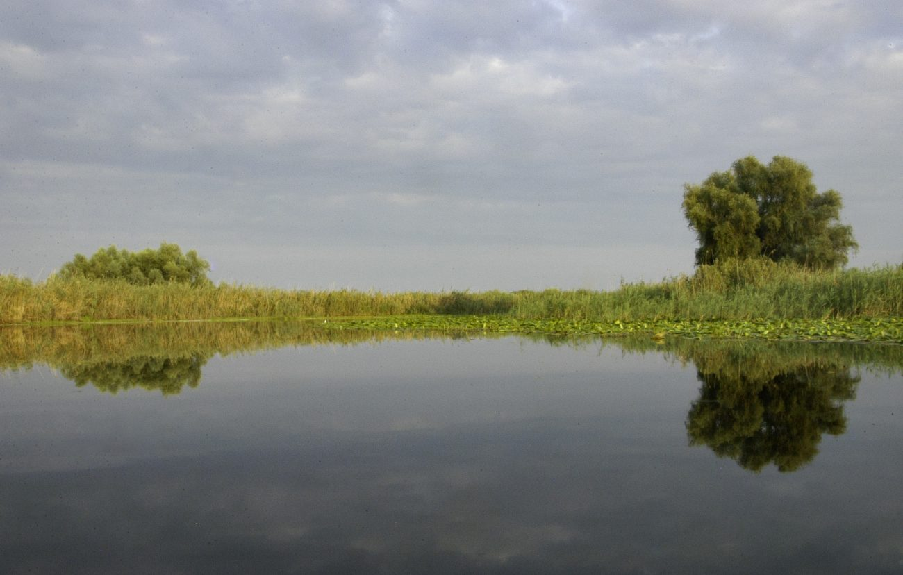 Reflexii pe canalele Deltei