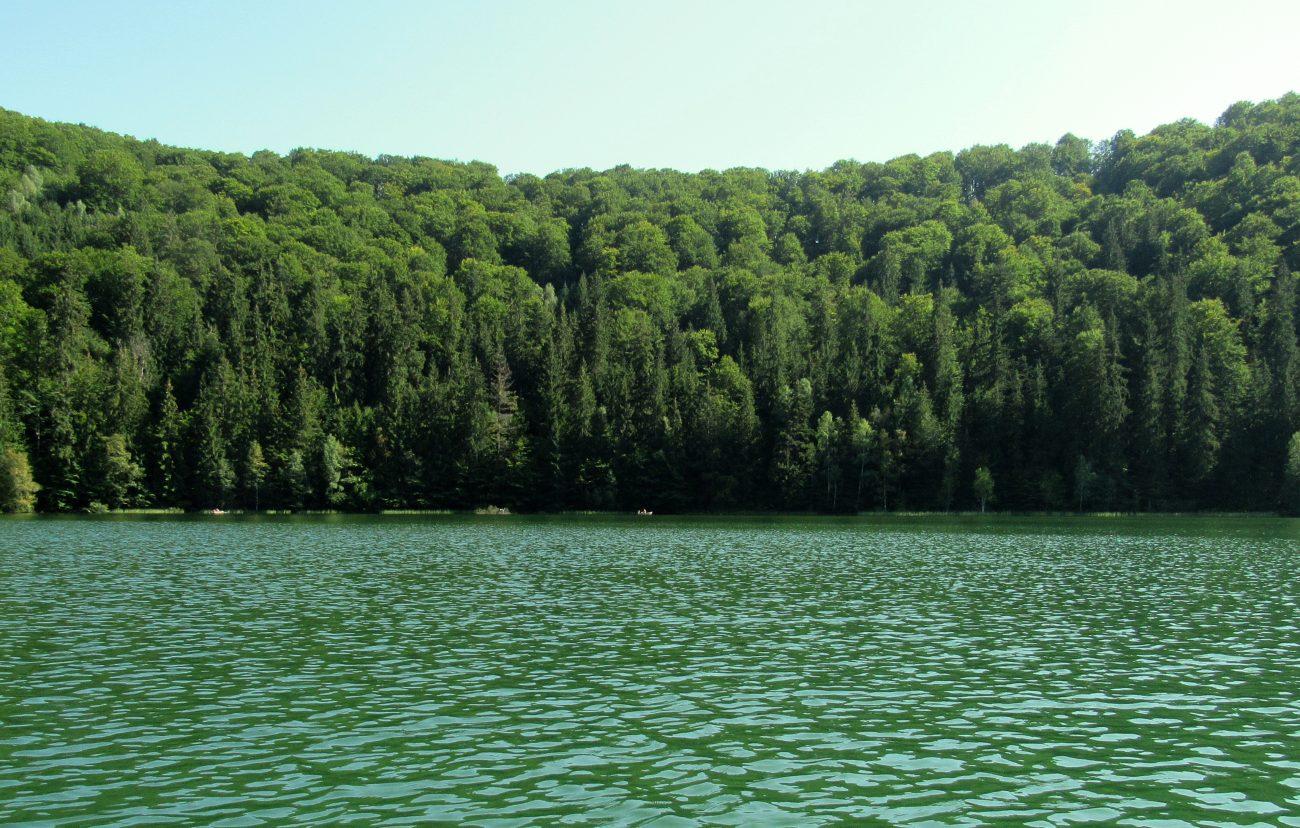 Padure si Lacul Sf. Ana