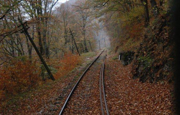 Traseu cu mocanita Romania