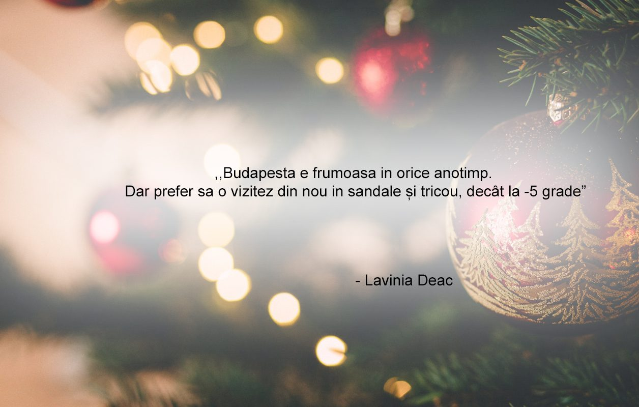 Lavinia Test